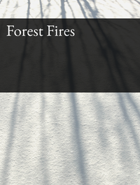 Forest Fires Optimized Hashtag Report