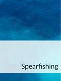 Spearfishing Optimized Hashtag Report