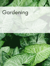 Gardening Optimized Hashtag Report