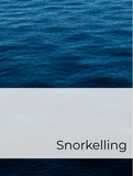 Snorkelling Optimized Hashtag Report