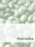 Avocados Optimized Hashtag Report