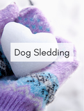 Dog Sledding Optimized Hashtag Report