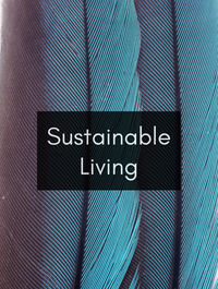 Sustainable Living Optimized Hashtag Report