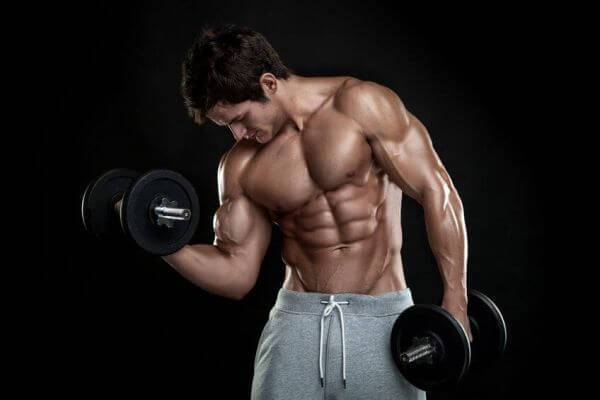 The Ultimate Guide to Building Muscle & Staying Lean (FREE)