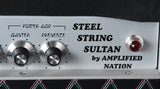 2019 Amplified Nation Steel String Sultan 100 Watt Head
