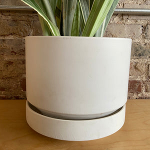 "10"" revival ceramics round 2 planter white"