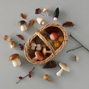 forest mushrooms basket