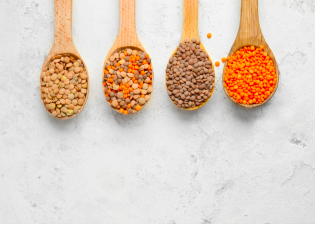 Source of Protein from Lentils