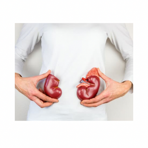 Chronic-Kidney-disease-inflammation-month