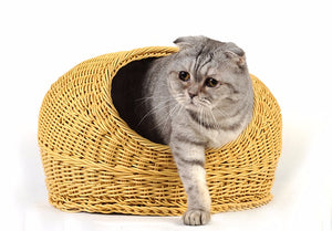 Cute Pet Cooling Wicker Bed