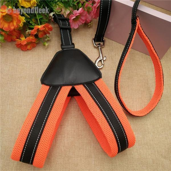 Harness Leash For Small Pets
