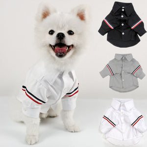 New Pet Korea Style Fashion Clothes