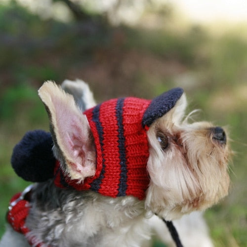 Luxury Knitting Dog Hat