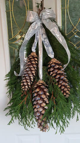 Himalayan White Pine Cones