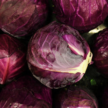 Load image into Gallery viewer, Red Cabbage