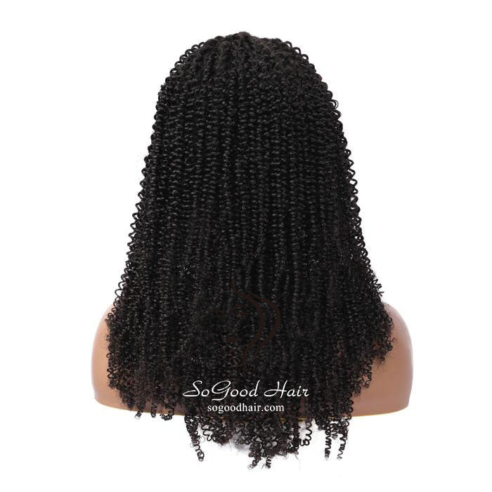 Kinky Curly | 13x4 Lace Front Wig| Natural Color Pre Plucked - sogoodhair