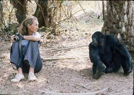 Jane Goodall Owning the Dash