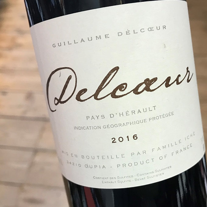 Guillaume Delcoeur 2017