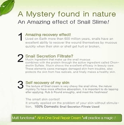 Mizon - All - in - One - Snail Repair Cream