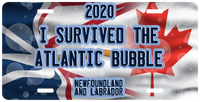 I Survived The Atlantic Bubble Plate