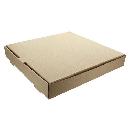 Plain Brown Pizza Box
