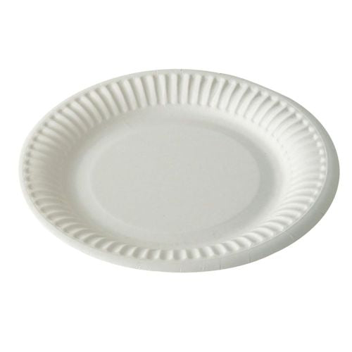 Disposable Paper Plates - Various Sizes
