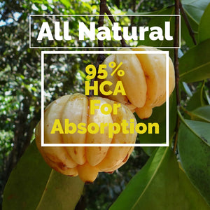 Garcinia Cambogia Extract | Formulated with 95% HCA Maximum Potency | 180 Veggie Capsules | Helios Supplements - Helios Supplements