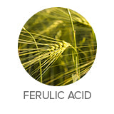 Ferulic acid skin lightening serum for brighter skin