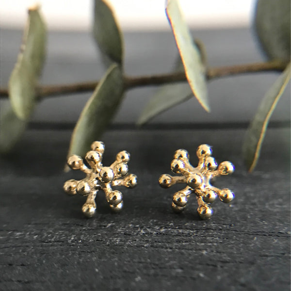 Small dandelion flower studs on a black wood background with eucalyptus branch.