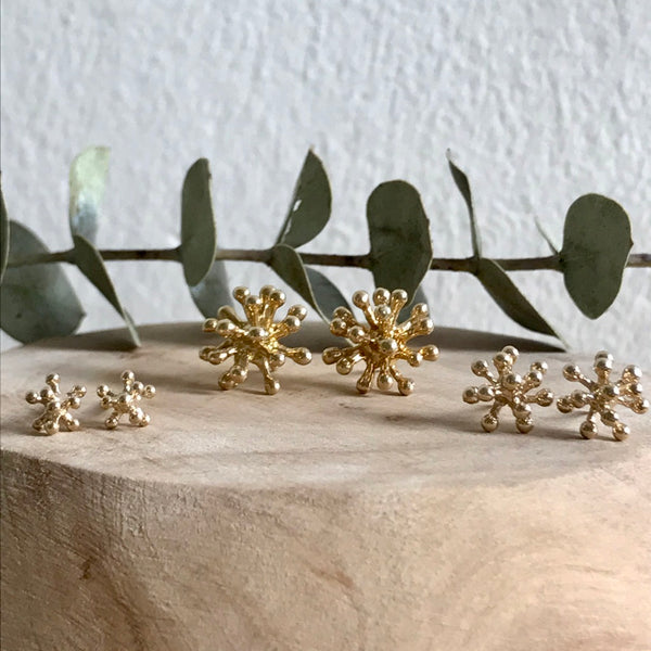 Tiny dandelion flower studs, small dandelion flower studs and medium dandelion flower studs on a birch base with eucalyptus leaf.