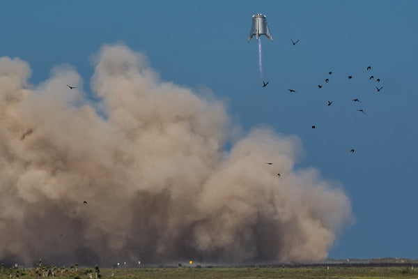 (LIMITED SIGNED) Starhopper and some birds