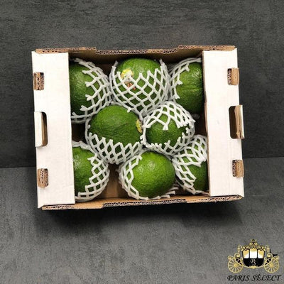 Avocat Tropical, Brésil, 40x30x4KG, Prix / KG - Paris Select