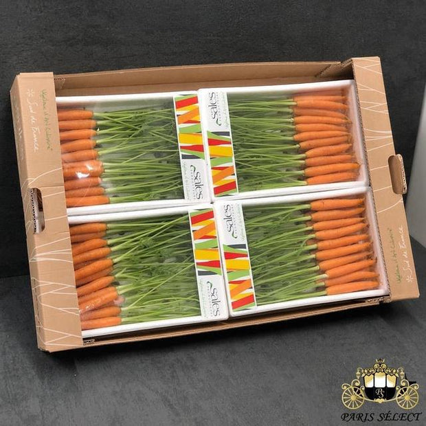 Carotte Orange Mini Barquettes 4X400GR, Sales, France, 60x40, Prix / BARQUETTE - Paris Select