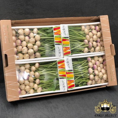 Navet Mini Barquettes 4X400GR, Sales, France, 60x40, Prix / BARQUETTE - Paris Select