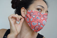 Load image into Gallery viewer, Washable Protective Fabric Masks