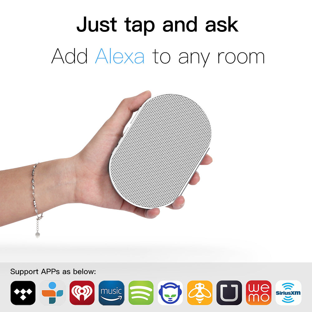E2 Smart Speaker with Alexa Voice Control