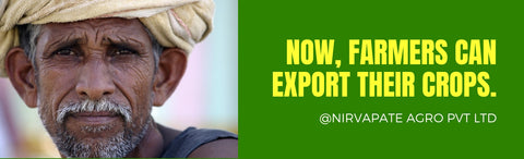 Nirvapate Farmers To Export Their Products