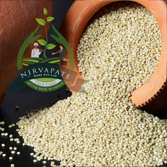 Browntop Millet Rice - Organic and Unpolished Nirvapate Agro Pvt Ltd