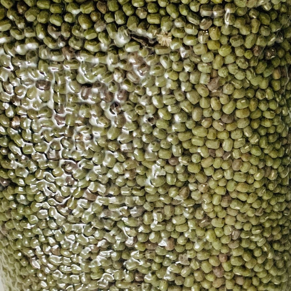 Green Gram - Whole - Moong Dal: 500g - Organic Nirvapate Agro PVT LTD