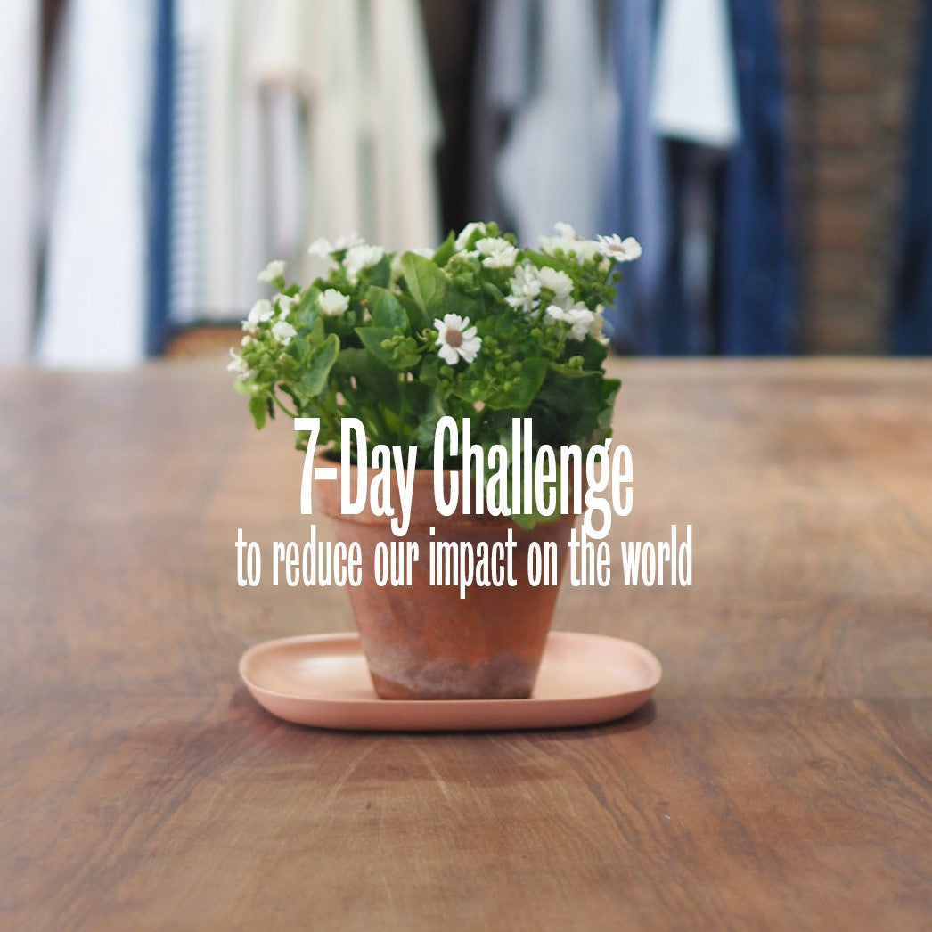 7-Day Carbon Footprint Reduction Challenge
