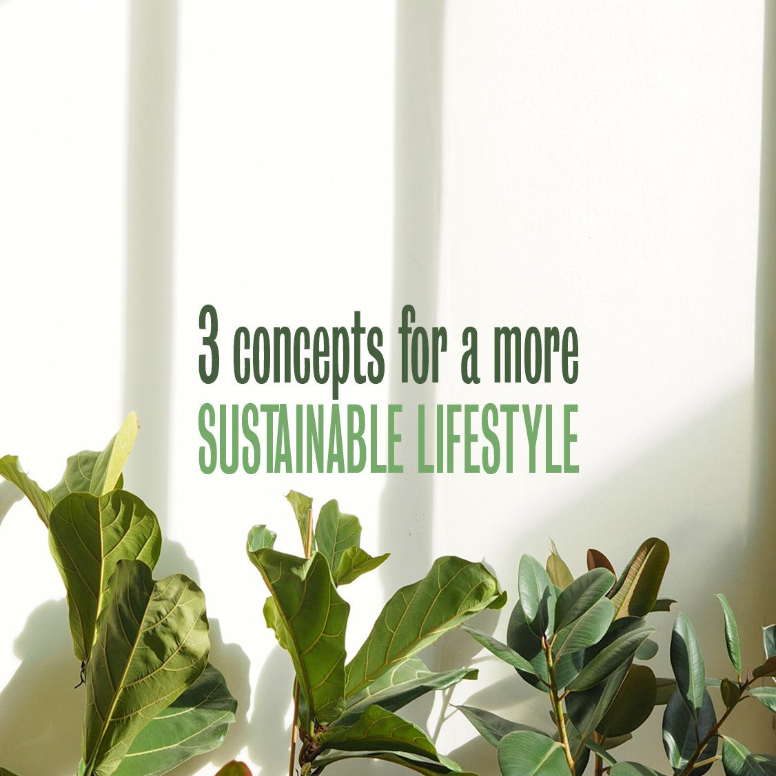 3 Concepts for a more sustainable lifestyle