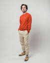 Brava Fabrics - Men's Sweater - Men's Casual Sweater - Sweater for Men - Model Llama Llama Earth