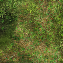Load image into Gallery viewer, Wargaming Battle Mat 6x4 Pacific Jungle