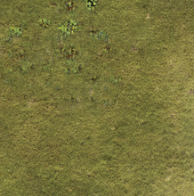 Load image into Gallery viewer, Wargaming Battle Mat 6x4 Grass