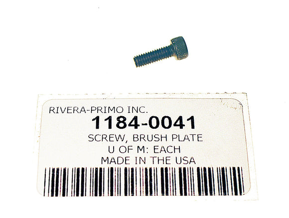 Screw, Brush Plate M4 X 12 SOCKET HEAD - Rivera Primo