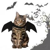 Halloween Bat Wing Pet Vest