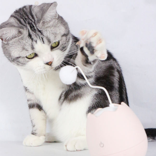(Limited Offer $20 OFF) Egg Style Automated Cat Toy