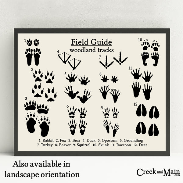 animal tracks wall art