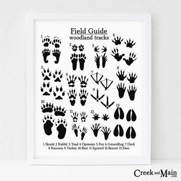 animal tracks print, black and white, nursery art