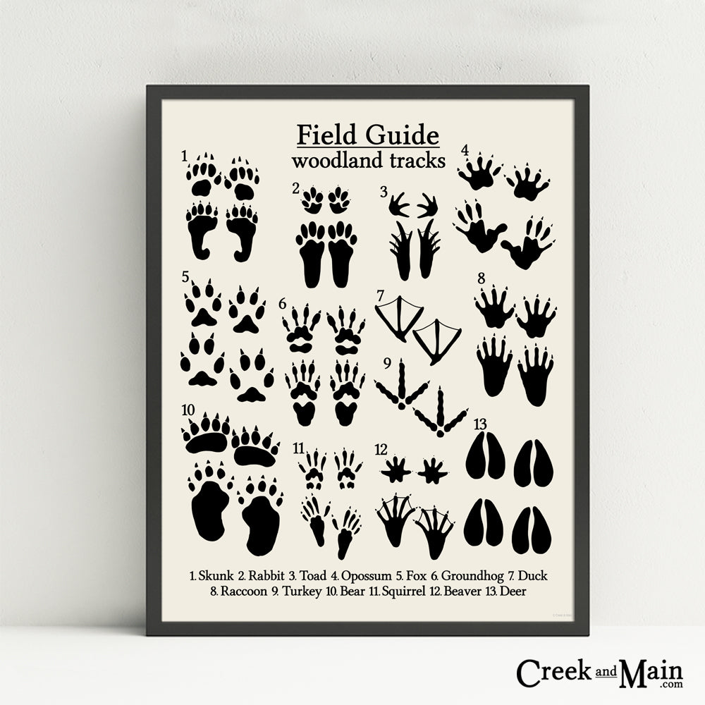 animal tracks poster, nursery decor